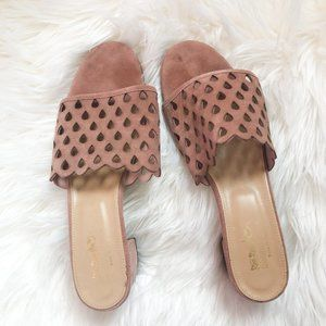 Coach and Four Blush Suede Pink Mules 11